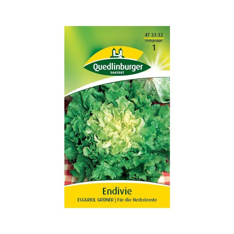 Quedlinburger-winterendivien-gialla a Cuore