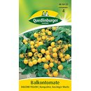 Balkontomate Balconi Yellow