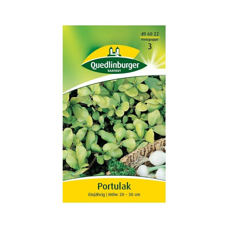 Quedlinburger Portulak