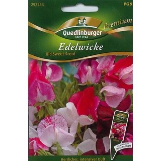 Edelwicken Old Sweet Scent