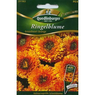 Ringelblume Greenheart Orange